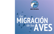 4.Migración de las Aves