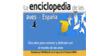 6.Enciclopedia de las Aves de España